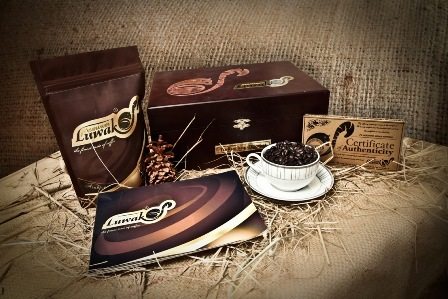 Luwak-coffee